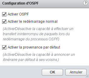 routage-ospf-nsx-13