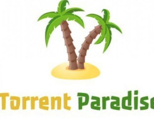 Maintenir son propre clone de Torrent Paradise